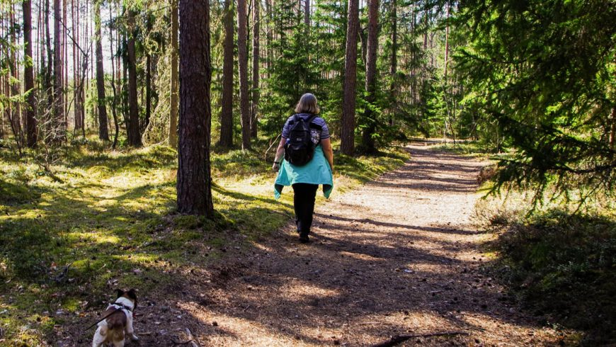 4 ways to keep your knees in shape for hiking
